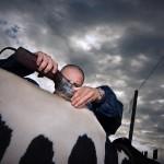 Klesnil-vystava-krav