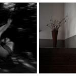 Z víkendových workshopů v přirozeném prostředí domova portrétovaných
